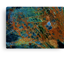 Jewel landscape  Canvas Print