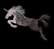 The unicorn by paula cattermole