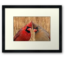 Two heads are better than one! Framed Print