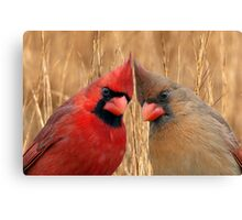 Two heads are better than one! Canvas Print
