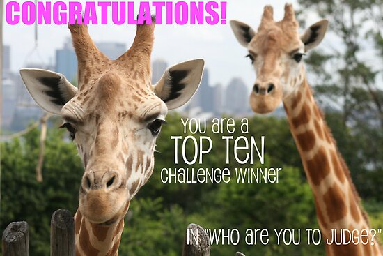 who are you to judge top 10 banner by ellismorleyphto