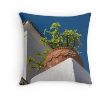Contemplating Mediterranean Vacations - Red Tile Roofs and Terracotta Flowerpots Throw Pillow