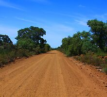 Road to Nowhere by Tainia Finlay
