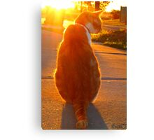 MajestiCat Canvas Print