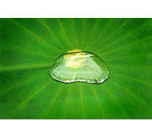 Drop of Zen Photographic Print