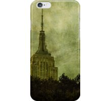 Needle Point iPhone Case/Skin