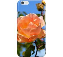 APRICOT DELIGHT iPhone Case/Skin
