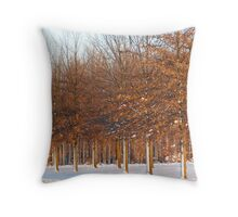 Sunlight In The Snow Throw Pillow
