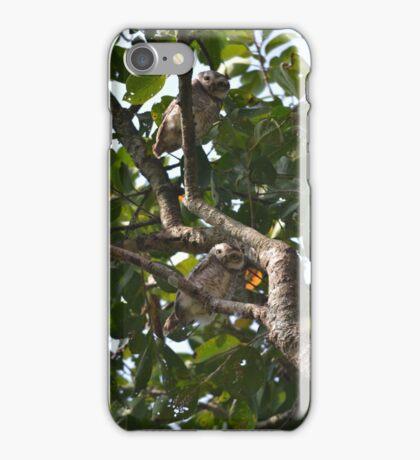 Owlets in Nepal iPhone Case/Skin