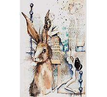 bald faeries with hare Photographic Print
