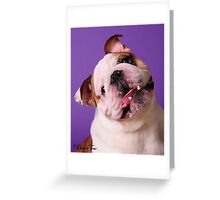 Sweetness is a Bulldog Greeting Card