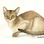 Abyssinian Cat Watercolor by Charlotte Yealey
