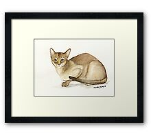 Abyssinian Cat Watercolor Framed Print