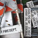 Where Signs Go to Die by Tama Blough