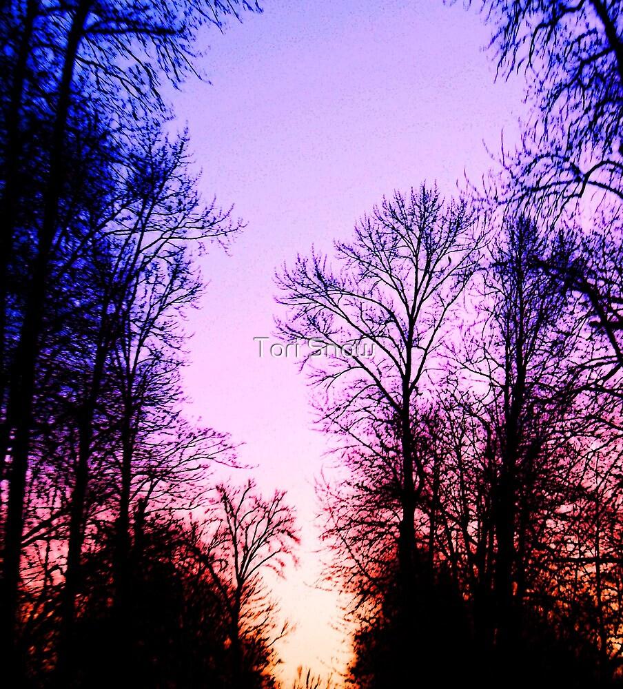 Evening Splendor by Tori Snow