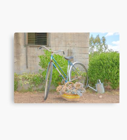 Watering the garden..... old bicycle... Canvas Print