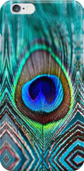 Peacock Feather by rapplatt