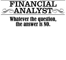 FINANCIAL ANALYST WHATEVER THE QUESTION, THE ANSWER IS NO by badassarts