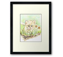 Kitty amongst the Flowers Framed Print
