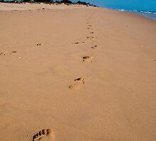 Follow in my Footsteps by SusanAdey