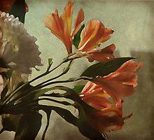 ~ Alstroemeria & Chrysanthemum ~ by Brenda Boisvert