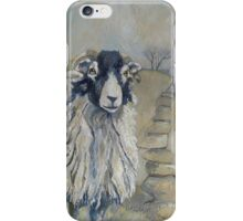 Guardian of the Path iPhone Case/Skin