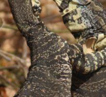 Lizard Fight Phone Case Sticker