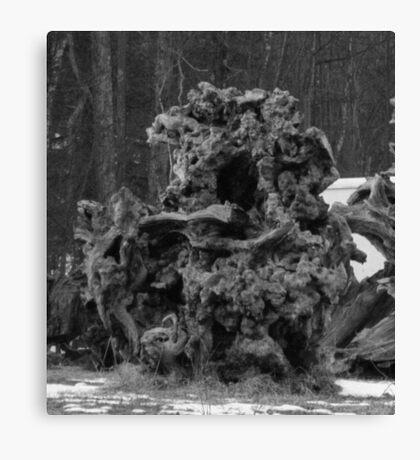 the Reader Tree Spirit Canvas Print