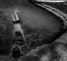 Nobody's Pool by Bruce  Watson