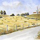 Hayrolls at Orgedeuil by ian osborne