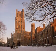 Ely Cathedral, Cambridgeshire by ArtisanArts