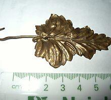 Leaf From Rheims by Tom Newman