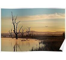 Flight, Lake Fyans, Grampians Poster