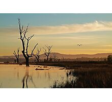 Flight, Lake Fyans, Grampians Photographic Print