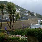 Mousehole harbour, Cornwall by BronReid