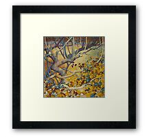 winter lights Framed Print