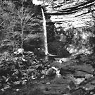 Hardraw Force by Lindamell