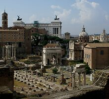 The Roman Forum view from Palatine Hill by BronReid