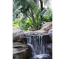 Restful Fountain Photographic Print