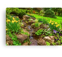The Little Creek in the Garden - Impressions Of Spring Canvas Print