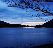 Lake at dusk by Carolyn Stringer