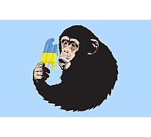 Oooooz Chimp Photographic Print
