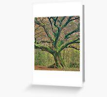 Enhanced oak Greeting Card