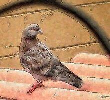 City Birds 2 by Christopher Johnson