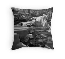 Iced Cooly Throw Pillow