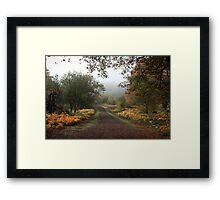 Misty Road of Autumn Framed Print