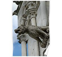Gargoyle, Amiens cathedral, France Poster