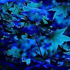 blue memory by Joseph Valcourt