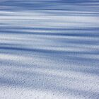 Shadow Painted Ice ... Sprinkled with Snow by SeeOneSoul