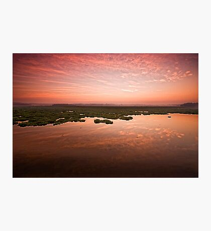 Desperate dawn Photographic Print